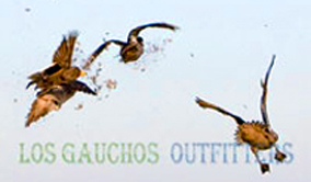 Argentina Duck Hunting - Los Gauchos Outfitters