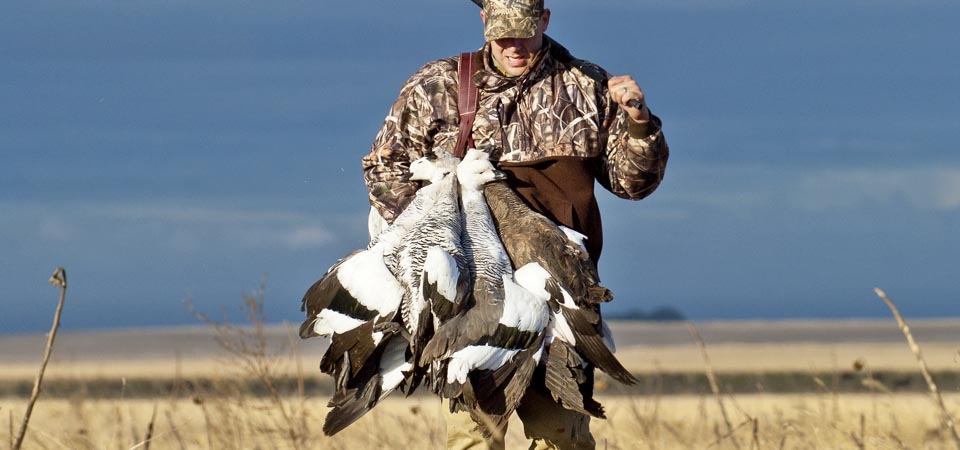 Argentina Goose Hunting - Los Gauchos Outfitters