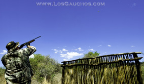 Argentina Dove Shooting - Los Gauchos Outfitters