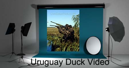 Los Gauchos Uruguay Duck Hunting Video