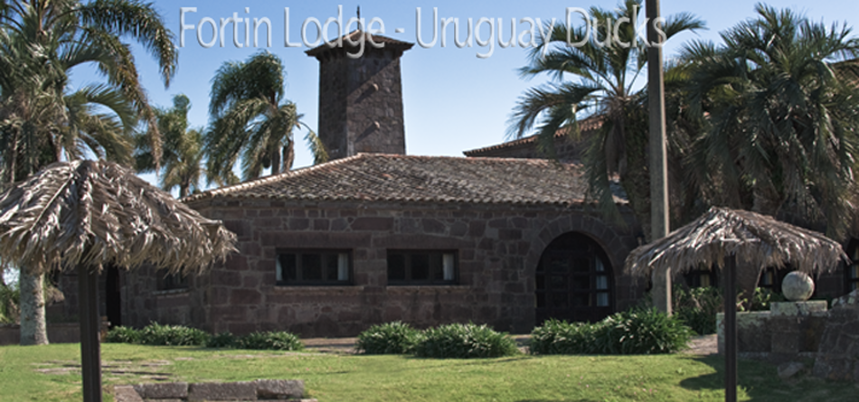 Uruguay Duck Hunting Lodge - Fortin Lodge
